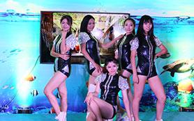 激情舞蹈、魔术表演各类节目助兴