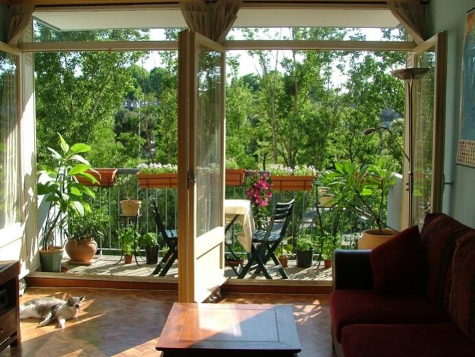 阳台种什么植物风水好呢