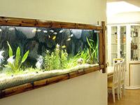田园风情生态鱼缸市场前景 田园风情生态鱼缸报价