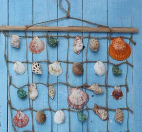 贝壳工艺品制作方法具体是什么?
