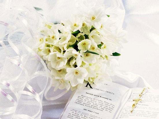 新娘捧花用什么花