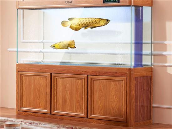 合肥定做鱼缸价格