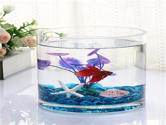 鱼缸摆放与风水
