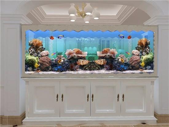 鱼缸放在家里什么位置