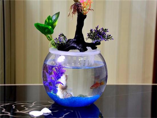 鱼缸的灯要几种颜色
