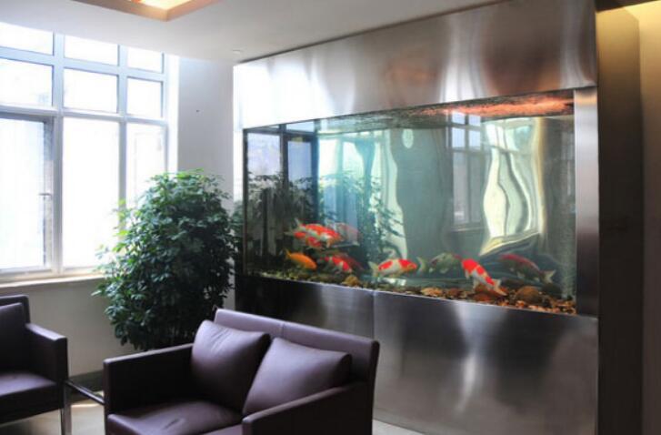 办公室鱼缸摆放位置风水详解