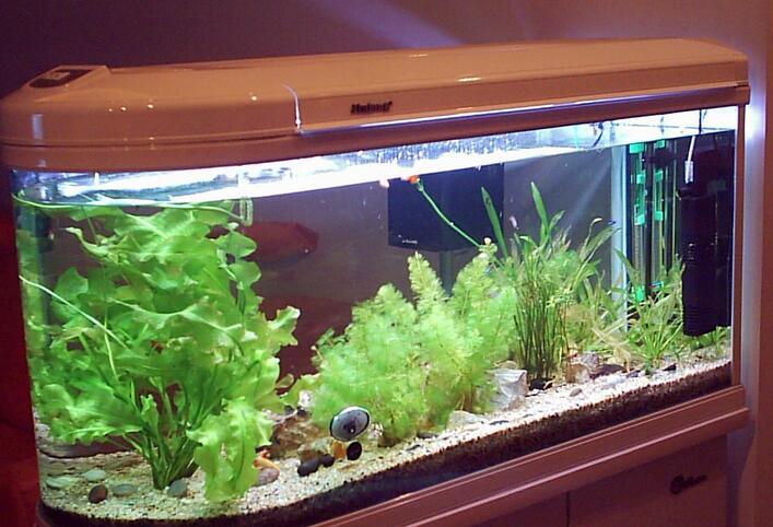 鱼缸风水尺寸