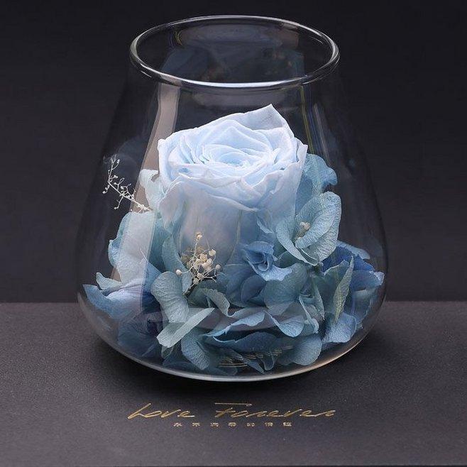 厄瓜多尔玫瑰