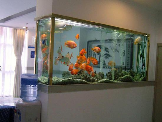客厅鱼缸的摆放风水,如何增加财运