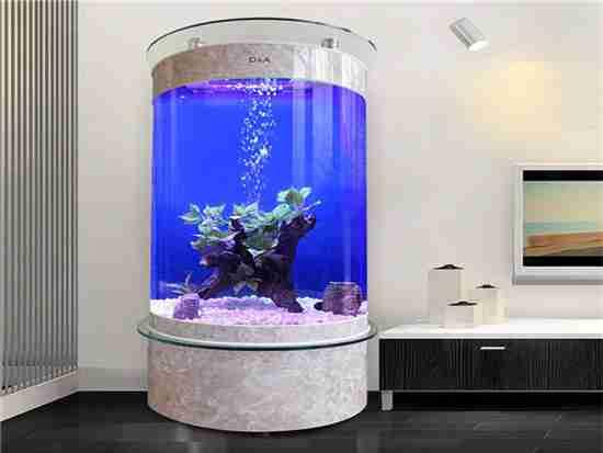 家用鱼缸多少钱