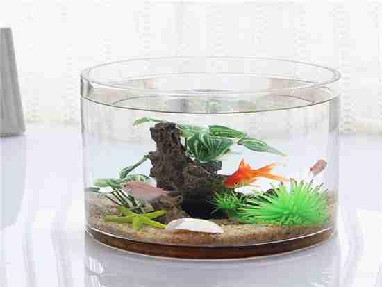 鱼缸适合放在客厅什么位置