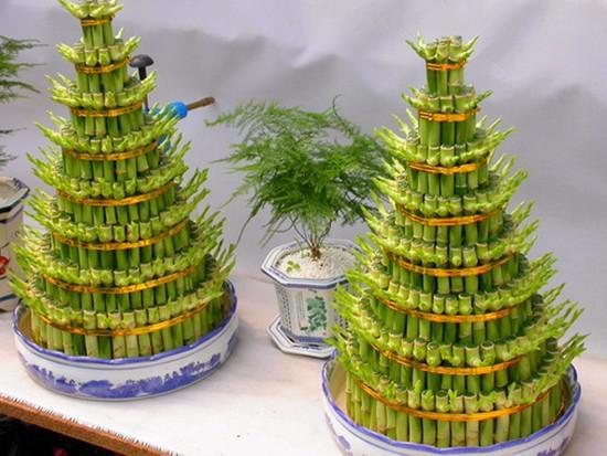 富贵竹风水数量是多少