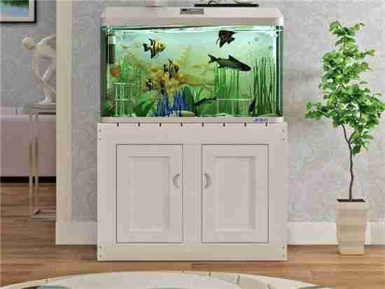 圆形鱼缸价格及图片