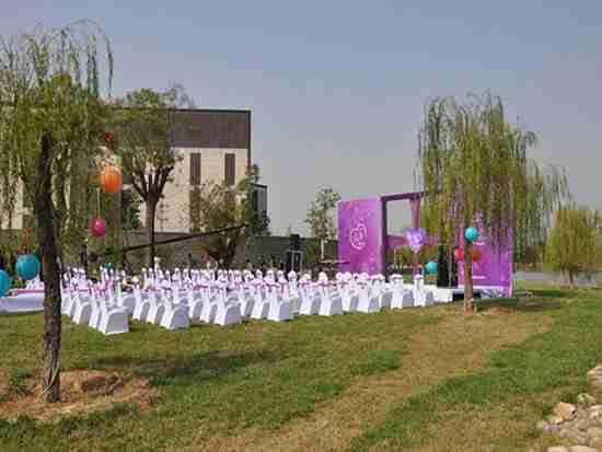 草坪婚礼价格一般多少钱