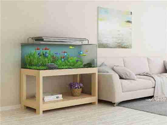 鱼缸摆放与风水都有什么讲究